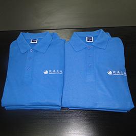 Πουκάμισο Polo προσαρμοσμένο δείγμα εκτύπωσης από εκτυπωτή A3 T-shirt WER-E2000T